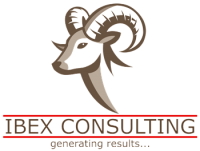 Ibex Financial & Management Consulting